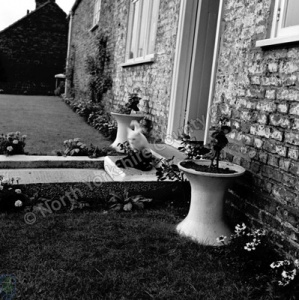 Flawith, Flower Pots